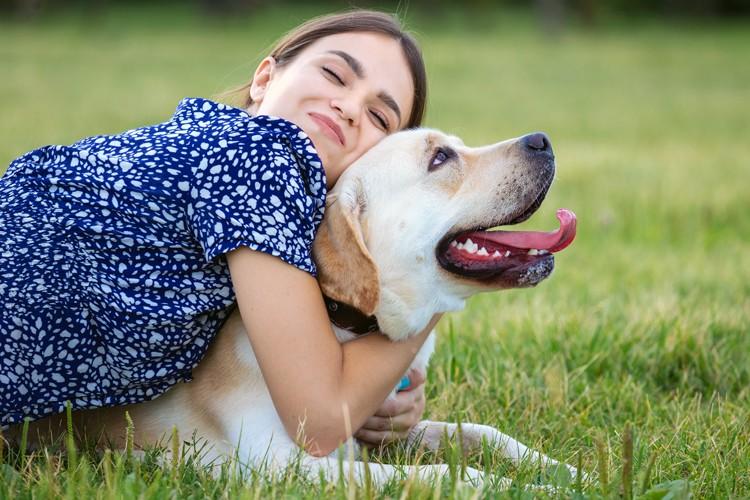 Je hond verzekeren - ontdek waarom het loont